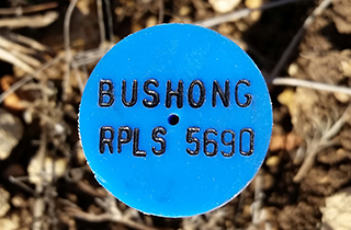 Estate Surveying | Bushong Land Surveying PLLC | Kerrville, TX | (830) 928-4070